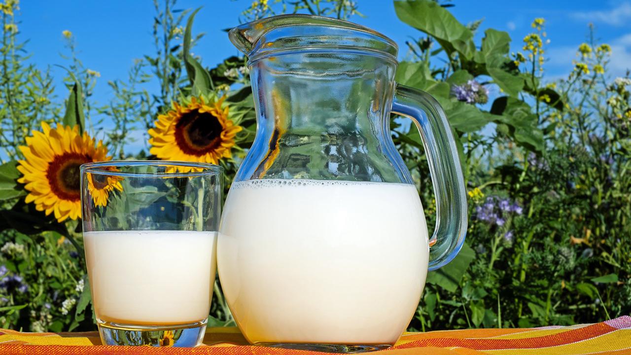 Abschaffung des Schulmilchprogramms verhindern!